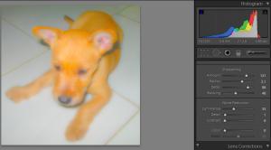 Edit Detail Setting